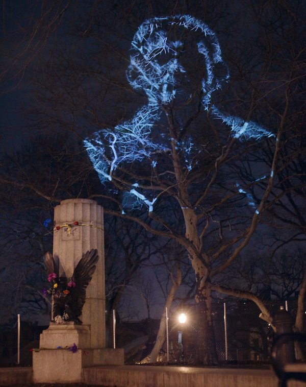 snowden_bust_projection_2015_park